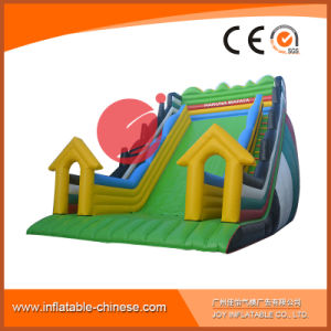 2017 Latest Inflatable Slide for Amusement Park Game (T4-315) pictures & photos