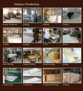 Luxembourg Memory Foam Mattress in a Box Bamboo King Size Mattress pictures & photos