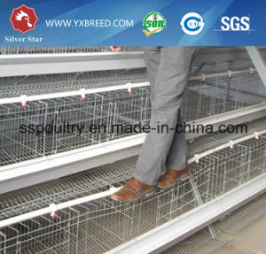 Battery Chicken Cage for Hen Farm pictures & photos