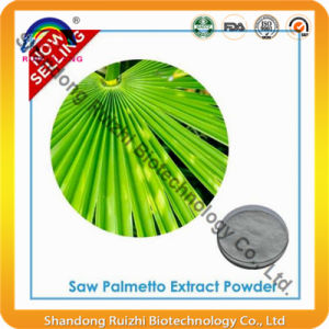 Fatty Acids -Nature Plant Extract Saw Palmetto P. E Hot Sell pictures & photos