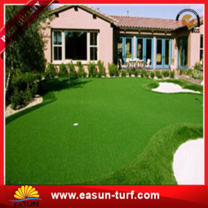 Landscape Waterless Lawn Artificial Turf Grass pictures & photos