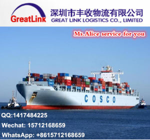 Ocean Shipping From Shenzhen to Livorno, Italy