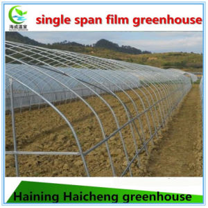 Cheap Single Span Film Agriculture Greenhouse for Vegetable and Garden pictures & photos