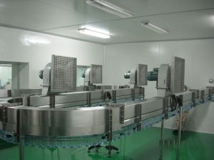 China Manufacturer of Pet Bottle Air Conveyor (FS-1) pictures & photos