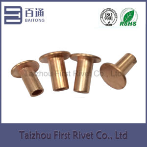 7-8 Copper Plated Flat Head Semi Tubular Steel Rivet pictures & photos