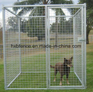 Welding Mesh Color Powder Outdoor Pet Safe House/Dog Kennel/Dog Cage pictures & photos
