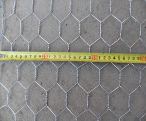 Galvanized Heavy Hexagonal Wire Mesh pictures & photos