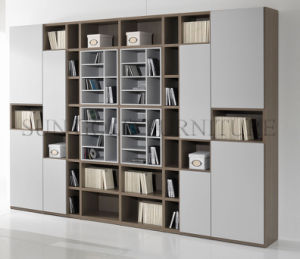 Modern Office Wooden Bookcase Furniture File Modular Cabinet (SZ-FCT622) pictures & photos