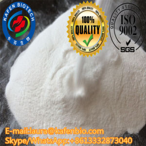Treat Obesity Chemical Pharmaceutical Levothyroxine Sodium/T4 Raw Steroids Powder pictures & photos