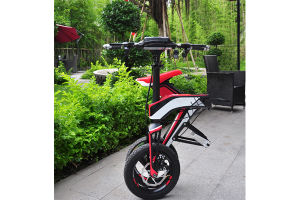 Folding Lead Acid Battery Balancing Electric Dirt Bike (SZE300B-1) pictures & photos