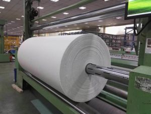 Competitive Price for Thermoplasitc Fiberglass Fabrics From China pictures & photos
