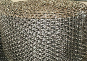 Stainless Steel 316 Conveyor Wire Mesh pictures & photos