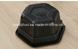 Single Hexagonal Thicken Two Layers Disposable Plastic Food Container pictures & photos