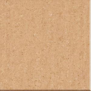 600X600 Double Loading Tile Porcelain Tile Floor Tile pictures & photos