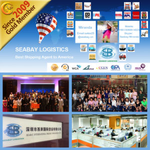 Shanghai Sea Shipping Service to New York pictures & photos