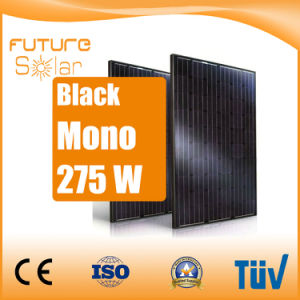 Futuresolar Black Panels 275 W Solar System Panel pictures & photos