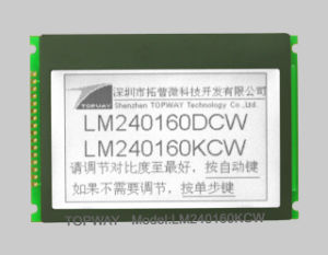 240X160 Cog Graphic LCD Display with Touch Screen Cog LCD Display Supplier (LM240160G) pictures & photos