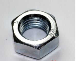 Stainless Steel 304/316 Hex Nuts/Carbon Steel Zinc Plated Hex Nuts /Steel Galvanized Nylon Insert Lock Nut pictures & photos