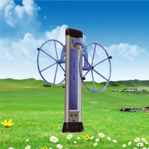 Top Quality Galvanized Steel Waist Twister Outdoor Fitness Equipment pictures & photos