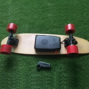 Portable Penny Board 350W Cheap Electric Skateboard