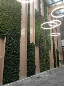 Hotel Building Shopping Mall Decor Artificial Green Plant Wall pictures & photos