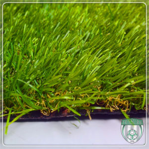 Customized Artificial Synthetic Turf for Wedding Ceremony pictures & photos