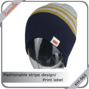 Fashionable Stripe Design Hat with Print Label