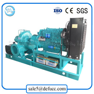 6 Inch Double Suction Horizontal Diesel Engine Centrifugal Pump for Field pictures & photos