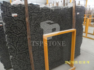 Black Oracle Marble Slabs pictures & photos