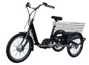 250watt 36V 10 Ah with Basket CE Electric Tricycle pictures & photos