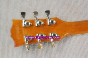 Custom Style / Afanti Electric Guitar (CST-162) pictures & photos