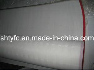 Conveyor Belt (TYC-88) pictures & photos