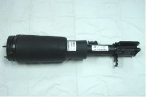 Air Suspension RNB000740G for Range Rover pictures & photos