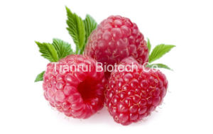 Raspberry Juice Powder /Raspberry Powder/Raspberry Extract Powder pictures & photos