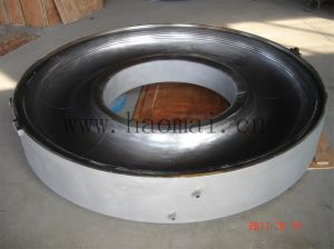 Experienced Inner Tube Mould Supplier pictures & photos