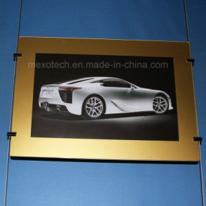 Hanging Golden Tone Frame LED Light Box for Exhibition Promotion pictures & photos
