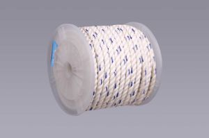 Polyester 3 Strand Twisted Rope (1330408-180-4) pictures & photos