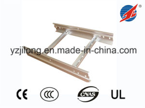 Stainless Cable Ladder Tray pictures & photos
