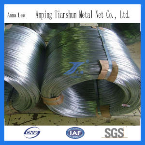 High Tensile Strength Galvanized Wire pictures & photos