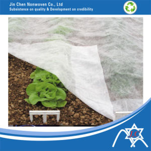 PP Nonwoven for Agriculture Green House Vegetable Cover pictures & photos