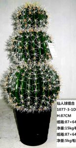 High Quality Artificial Plants and Flowers of Cactus pictures & photos