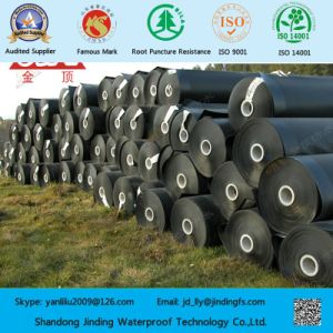 Pond Liner HDPE Sheet in 1.0mm Thickness pictures & photos
