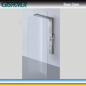 Stainless Rain Shower Column and Shower Screen Combo (LNH20-01) pictures & photos