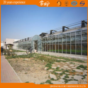 Tempered Glass Greenhouse for Russia Market pictures & photos