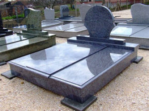 Dark Brown Granite Monument/Tombstone/Headstone