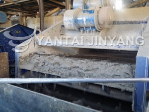 Tailings Treatment-Tailings Dewatering Process Vibrating Screen pictures & photos