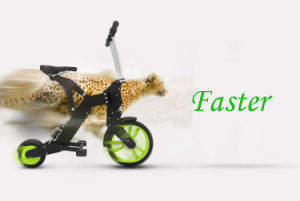 Small Folding E Bike pictures & photos