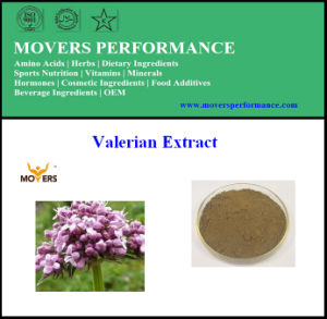 Factory Supply High Quality Valerian Root Extract pictures & photos