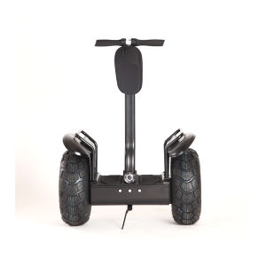2015 Best Selling 100 to 240V Electric Scooter with 2000W Motor pictures & photos