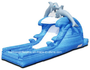 Home and Mall Used Giant Inflatable Slide Playground Slide pictures & photos